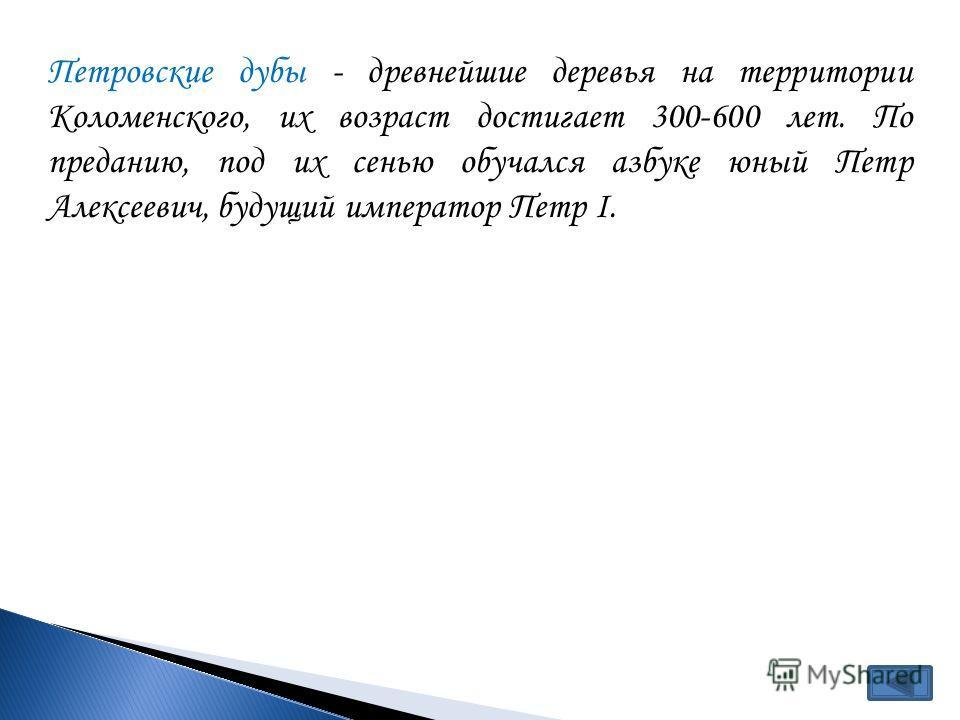Петровские дубы - древнейшие деревья на территории Коломенского, их возраст достигает 300-600 лет. По преданию, под их сенью обучался азбуке юный Петр Алексеевич, будущий император Петр I.