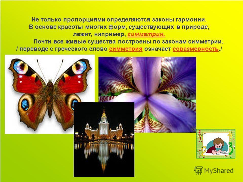Не только пропорциями определяются законы гармонии. В основе красоты многих форм, существующих в природе, лежит, например, симметрия. Почти все живые существа построены по законам симметрии. / переводе с греческого слово симметрия означает соразмерно