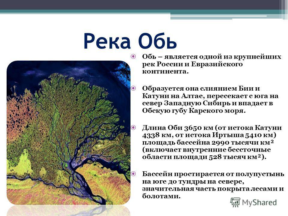 Река Обь Обь – является одной из крупнейших рек России и Евразийского континента. Образуется она слиянием Бии и Катуни на Алтае, пересекает с юга на север Западную Сибирь и впадает в Обскую губу Карского моря. Длина Оби 3650 км (от истока Катуни 4338
