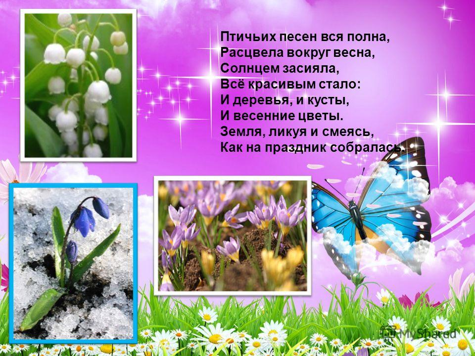 Птичьих песен вся полна, Расцвела вокруг весна, Солнцем засияла, Всё красивым стало: И деревья, и кусты, И весенние цветы. Земля, ликуя и смеясь, Как на праздник собралась.