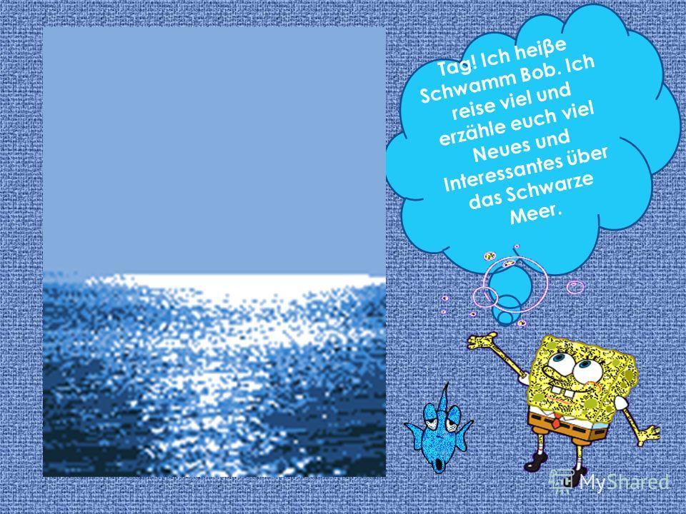 Tag! Ich heine Schwamm Bob. Ich reise viel und erzähle euch viel Neues und Interessantes über das Schwarze Meer.