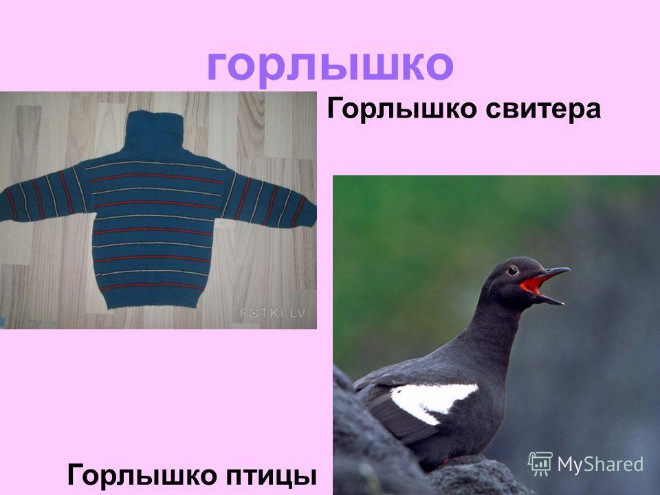 горлышко Горлышко свитера Горлышко птицы