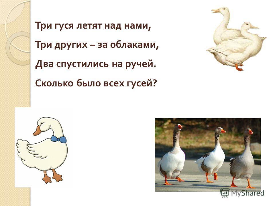 Три гуся летят над нами, Три других – за облаками, Два спустились на ручей. Сколько было всех гусей ?
