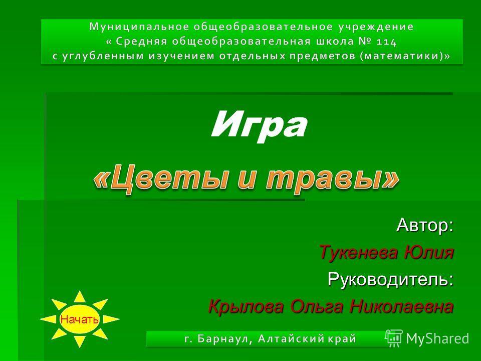 Игра Автор: Тукенева Юлия Руководитель: Крылова Ольга Николаевна Начать