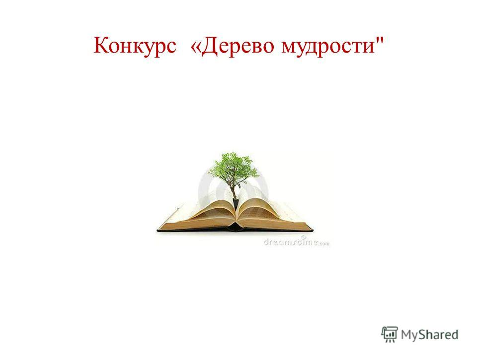 Конкурс «Дерево мудрости