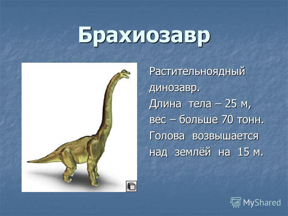 Брахиозавр Растительноядныйдинозавр. Длина тела – 25 м, вес – больше 70 тонн. Голова возвышается над землёй на 15 м.