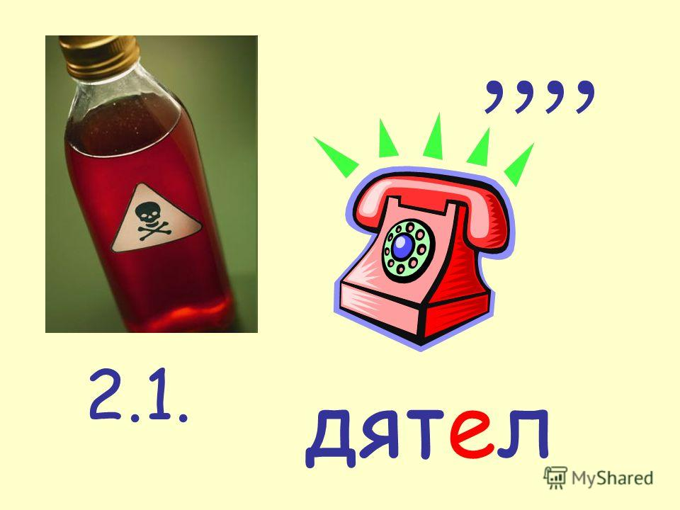 2.1.,,,, дятел