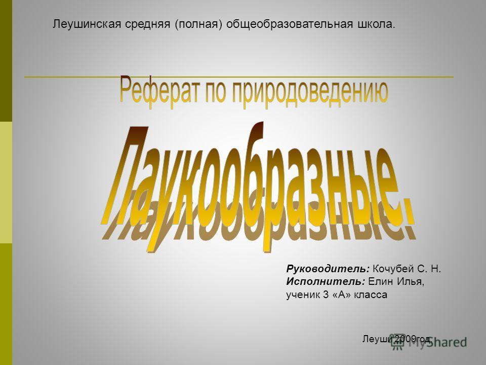 Леушинская средняя (полная) общеобразовательная школа. Руководитель: Кочубей С. Н. Исполнитель: Елин Илья, ученик 3 «А» класса Леуши 2009 год.
