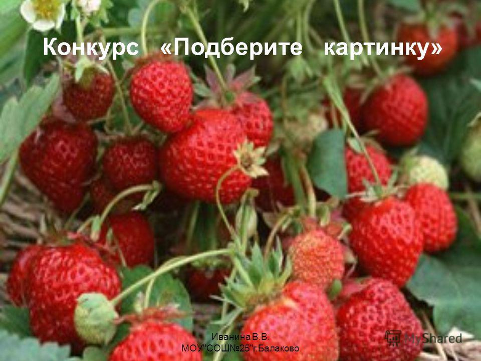 Конкурс «Подберите картинку» Иванина В.В. МОУСОШ25г.Балаково