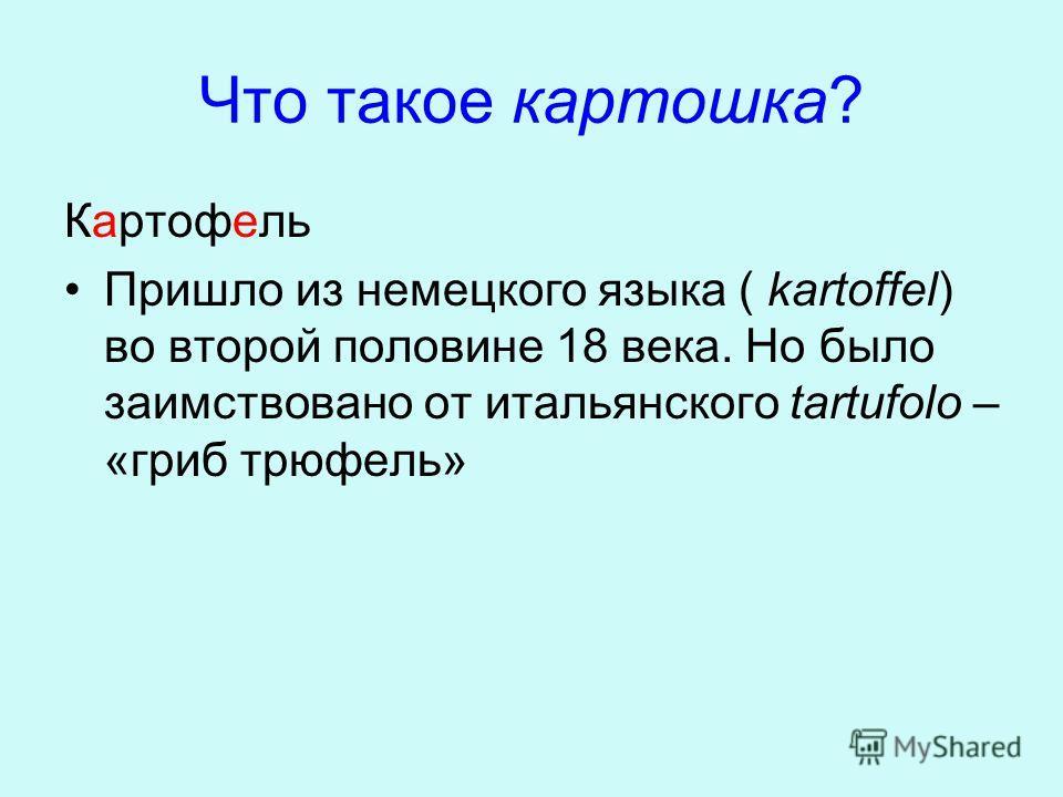 Что такое картошка? Картофель Пришло из немецкого языка ( kartoffel) во второй половине 18 века. Но было заимствовано от итальянского tartufolo – «гриб трюфель»