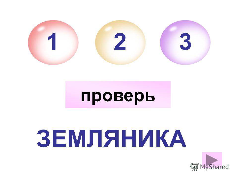 ЗЕМЛЯНИКА 213 ж.р. а проверь