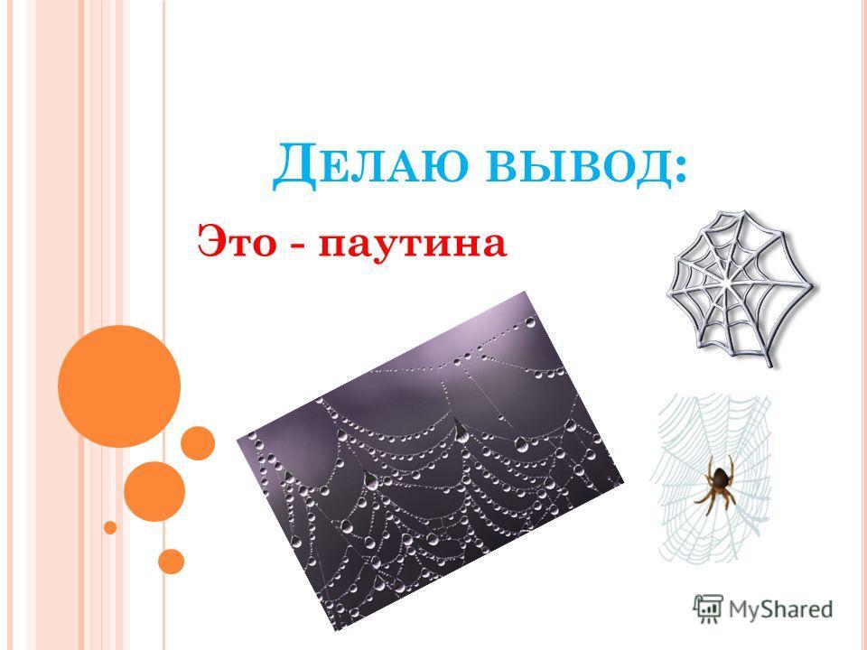 Д ЕЛАЮ ВЫВОД : Это - паутина