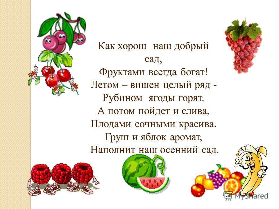 Как хорош наш добрый сад, Фруктами всегда богат! Летом – вишен целый ряд - Рубином ягоды горят. А потом пойдет и слива, Плодами сочными красива. Груш и яблок аромат, Наполнит наш осенний сад.