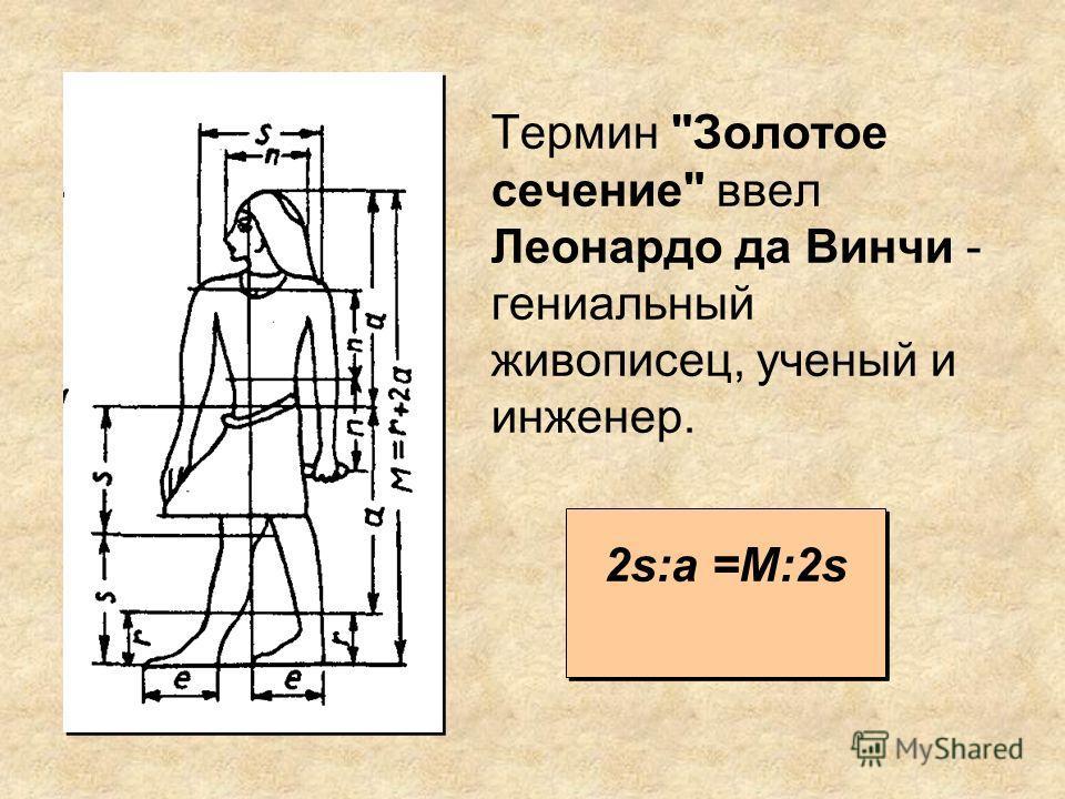 Термин Золотое сечение ввел Леонардо да Винчи - гениальный живописец, ученый и инженер. 2s:a =M:2s