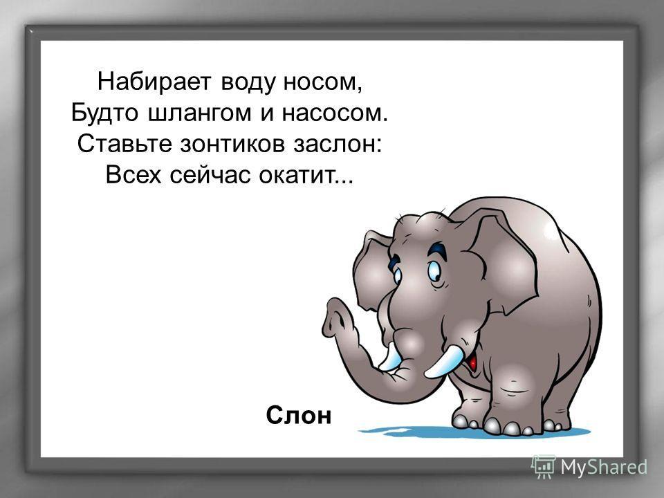 Набирает воду носом, Будто шлангом и насосом. Ставьте зонтиков заслон: Всех сейчас окатит... Слон