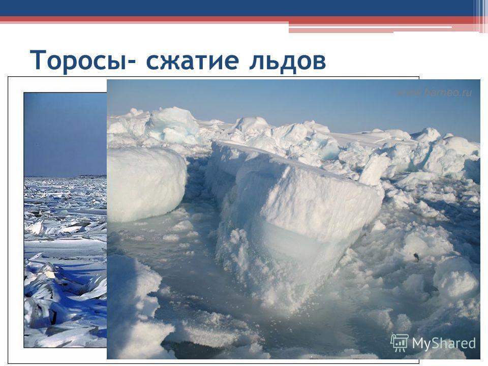 Торосы- сжатие льдов