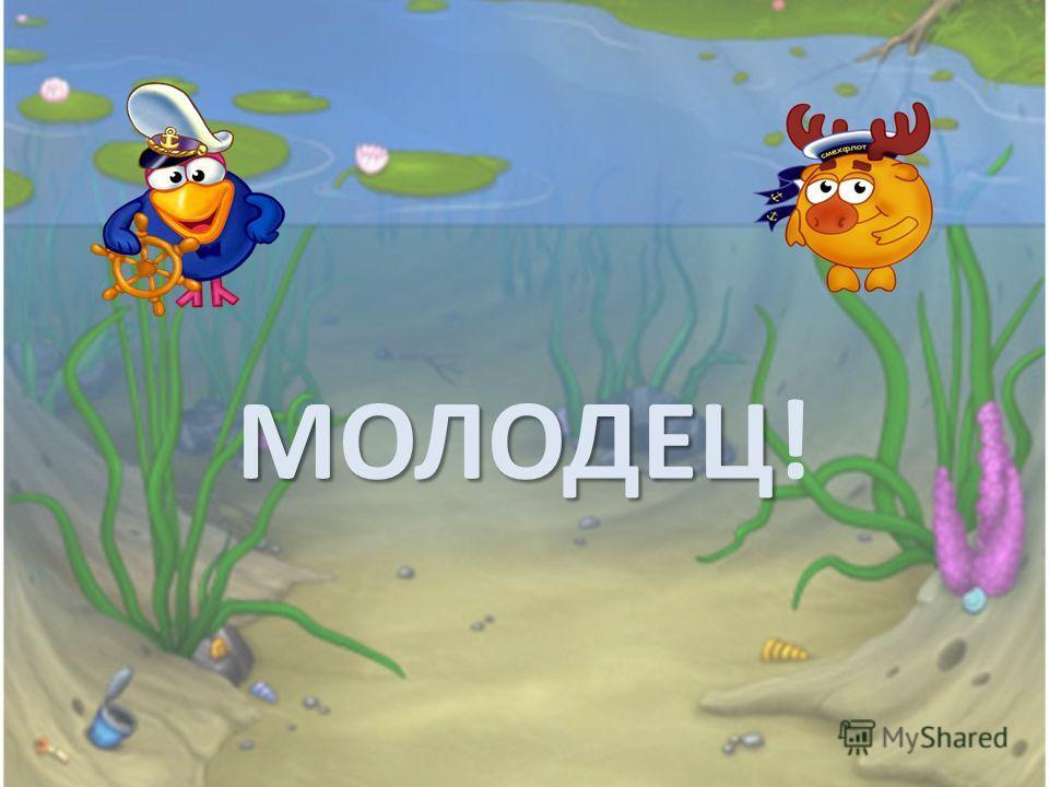 МОЛОДЕЦ МОЛОДЕЦ!