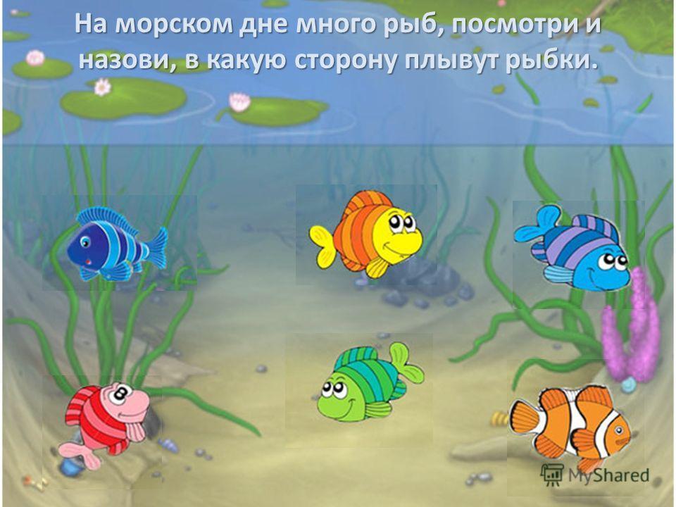 На морском дне много рыб, посмотри и назови, в какую сторону плывут рыбки.
