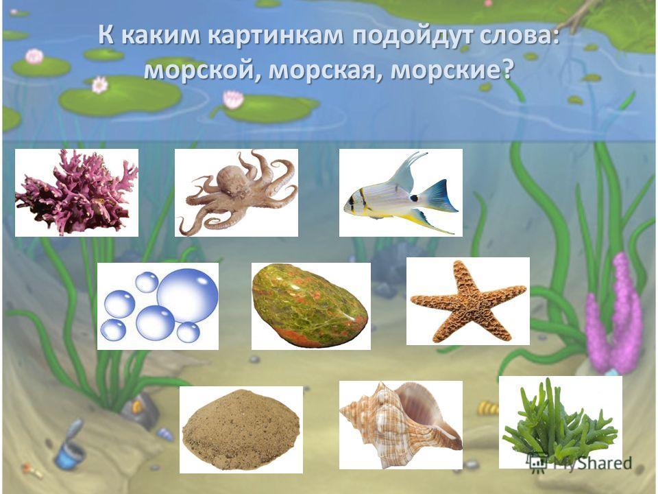К каким картинкам подойдут слова: морской, морская, морские? К каким картинкам подойдут слова: морской, морская, морские?