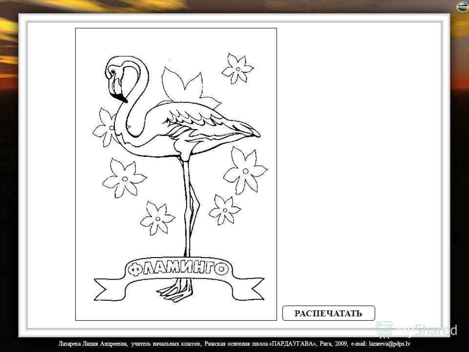 Лазарева Лидия Андреевна, учитель начальных классов, Рижская основная школа «ПАРДАУГАВА», Рига, 2009, e-mail: lazareva@pdps.lv РАСПЕЧАТАТЬ