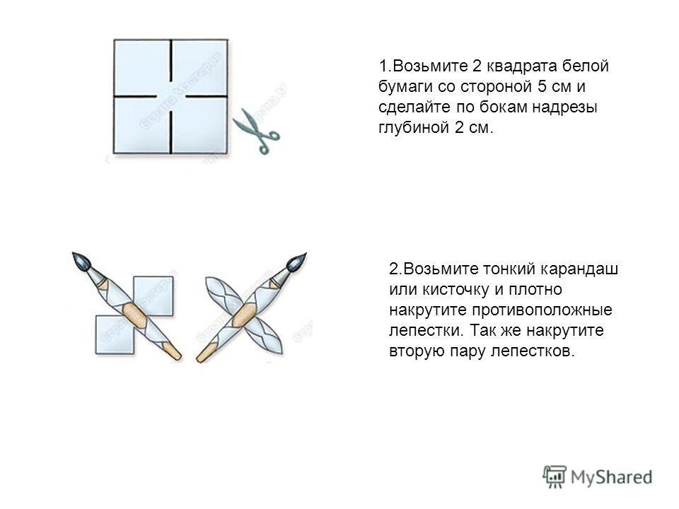 1. Возьмите 2 квадрата белой бумаги со стороной 5 см и сделайте по бокам надрезы глубиной 2 см. 2. Возьмите тонкий карандаш или кисточку и плотно накрутите противоположные лепестки. Так же накрутите вторую пару лепестков.