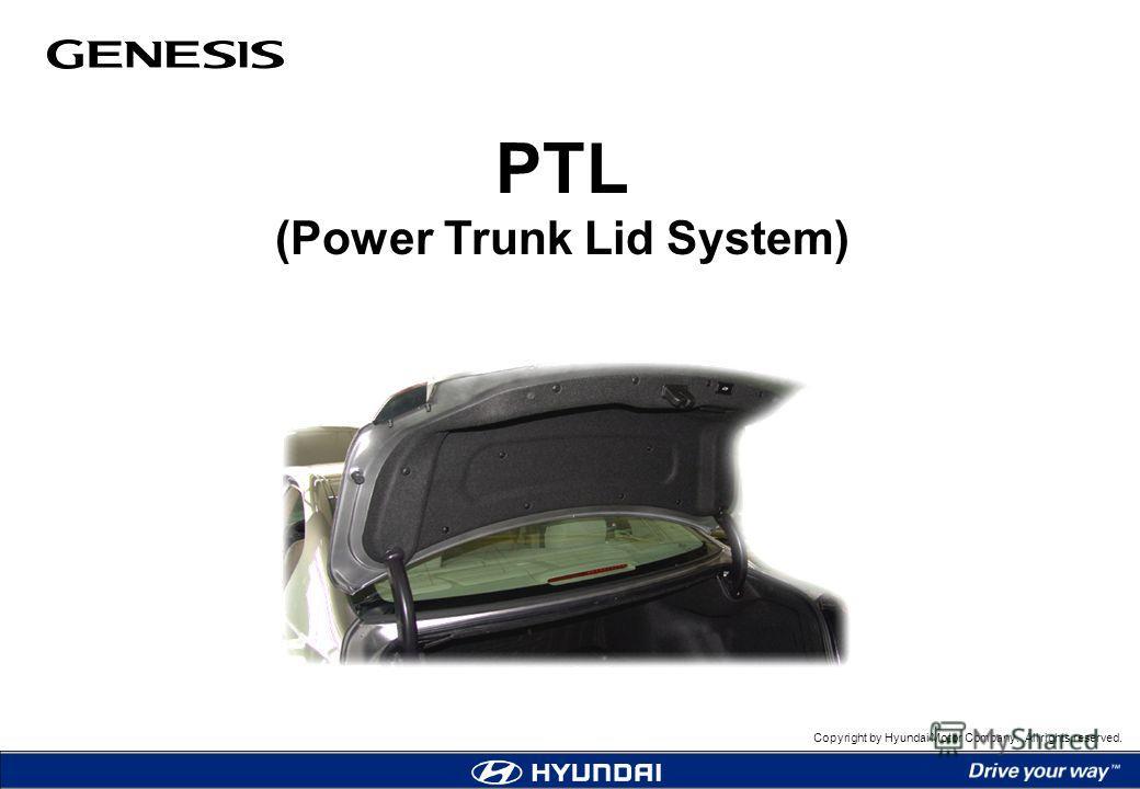 Ingwer Power Trunk  U2014 Rezepte Suchen