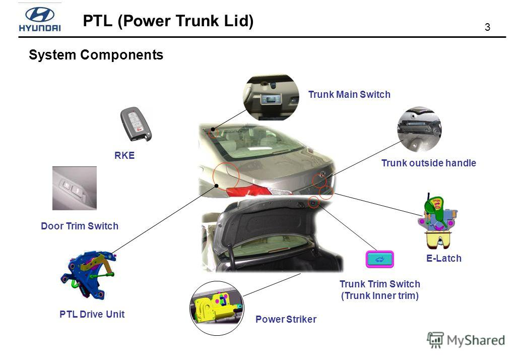 PTL (Power Trunk Lid) 3 System Components RKE Door Trim Switch Trunk Trim Switch (Trunk Inner trim) E-Latch Power Striker PTL Drive Unit Trunk Main Switch Trunk outside handle