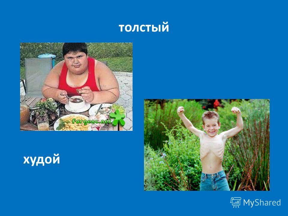 толстый худой