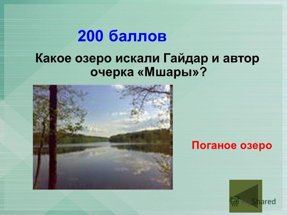 200 баллов Какое озеро искали Гайдар и автор очерка «Мшары»? Поганое озеро