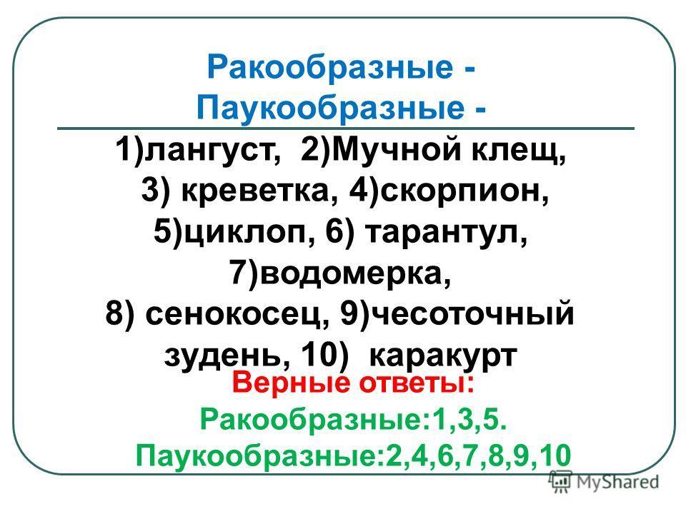 Верные ответы: Ракообразные:1,3,5. Паукообразные:2,4,6,7,8,9,10 Ракообразные - Паукообразные - 1)лангуст, 2)Мучной клещ, 3) креветка, 4)скорпион, 5)циклоп, 6) тарантул, 7)водомерка, 8) сенокосец, 9)чесоточный зудень, 10) каракурт