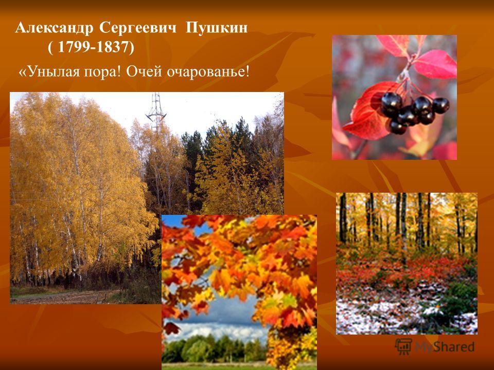 Александр Сергеевич Пушкин ( 1799-1837) «Унылая пора! Очей очарованье!