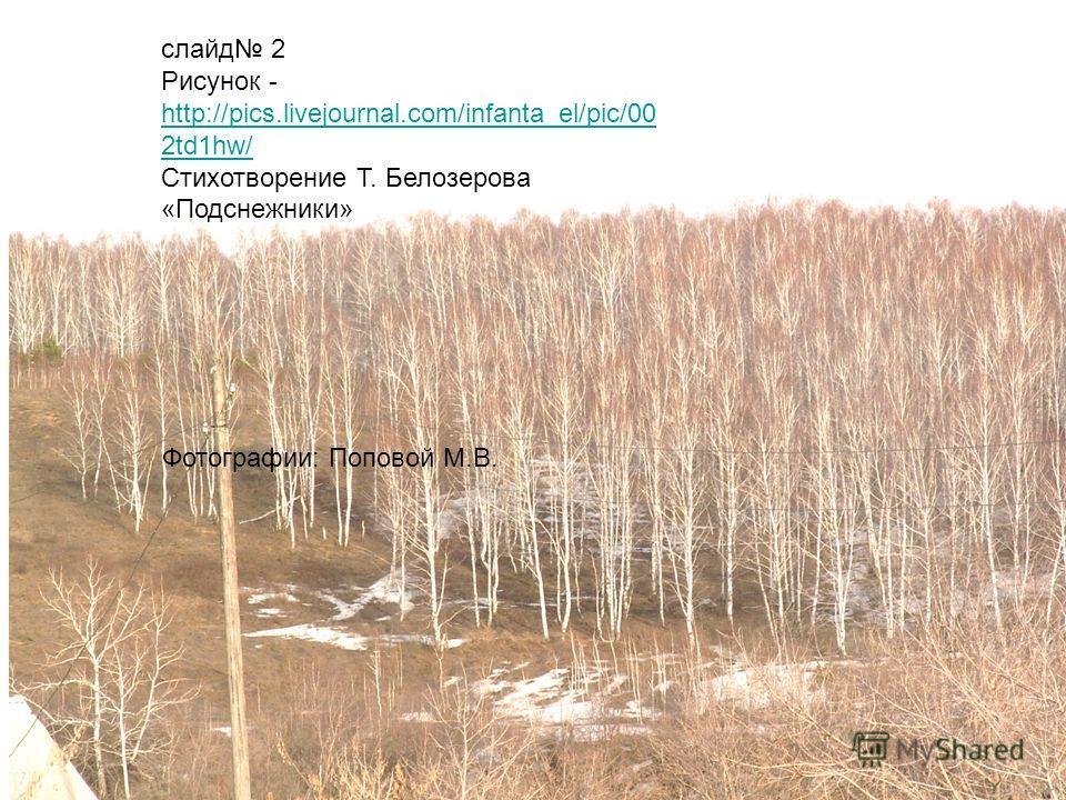 слайд 2 Рисунок - http://pics.livejournal.com/infanta_el/pic/00 2td1hw/ http://pics.livejournal.com/infanta_el/pic/00 2td1hw/ Стихотворение Т. Белозерова «Подснежники» Фотографии: Поповой М.В.