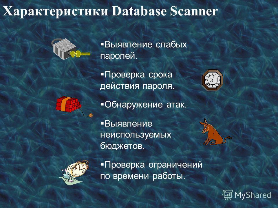 Характеристики Database Scanner Выявление слабых паролей. Проверка срока действия пароля. Обнаружение атак. Выявление неиспользуемых бюджетов. Проверка ограничений по времени работы.