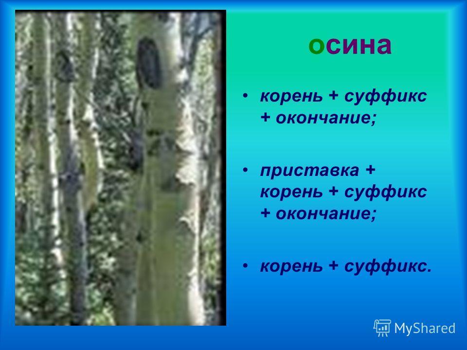 осина корень + суффикс + окончание; приставка + корень + суффикс + окончание; корень + суффикс.