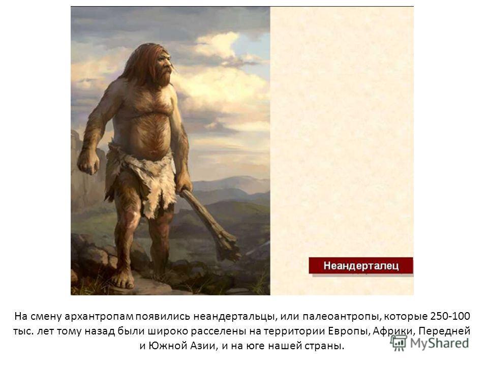На смену архантропам появились неандертальцы, или палеоантропы, которые 250-100 тыс. лет тому назад были широко расселены на территории Европы, Африки, Передней и Южной Азии, и на юге нашей страны.
