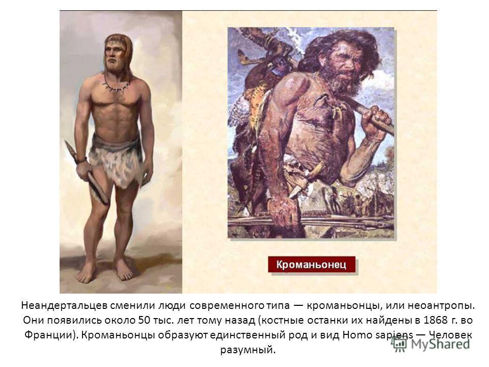 Неандертальцев сменили люди современного типа кроманьонцы, или неоантропы. Они появились около 50 тыс. лет тому назад (костные останки их найдены в 1868 г. во Франции). Кроманьонцы образуют единственный род и вид Homo sapiens Человек разумный.
