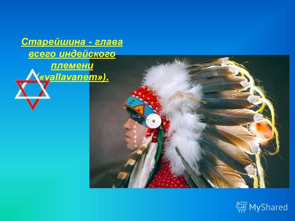 Старейшина - глава всего индейского племени («vallavanem»).