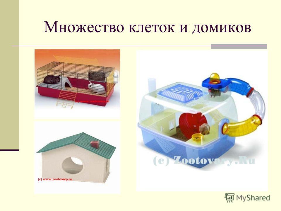 Множество клеток и домиков