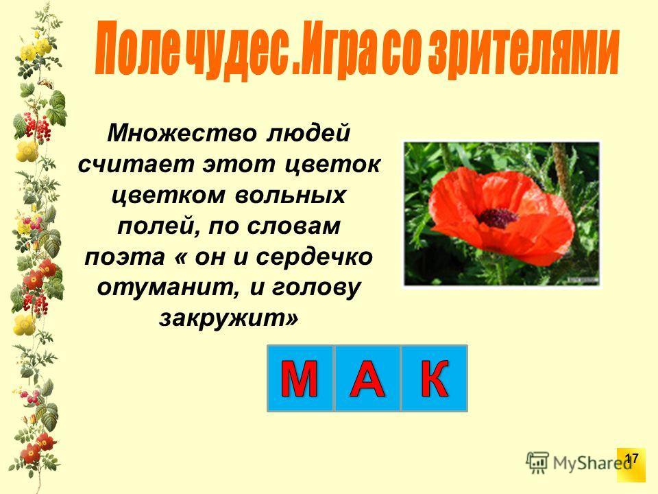 Множество людей считает этот цветок цветком вольных полей, по словам поэта « он и сердечко отуманит, и голову закружит» 17