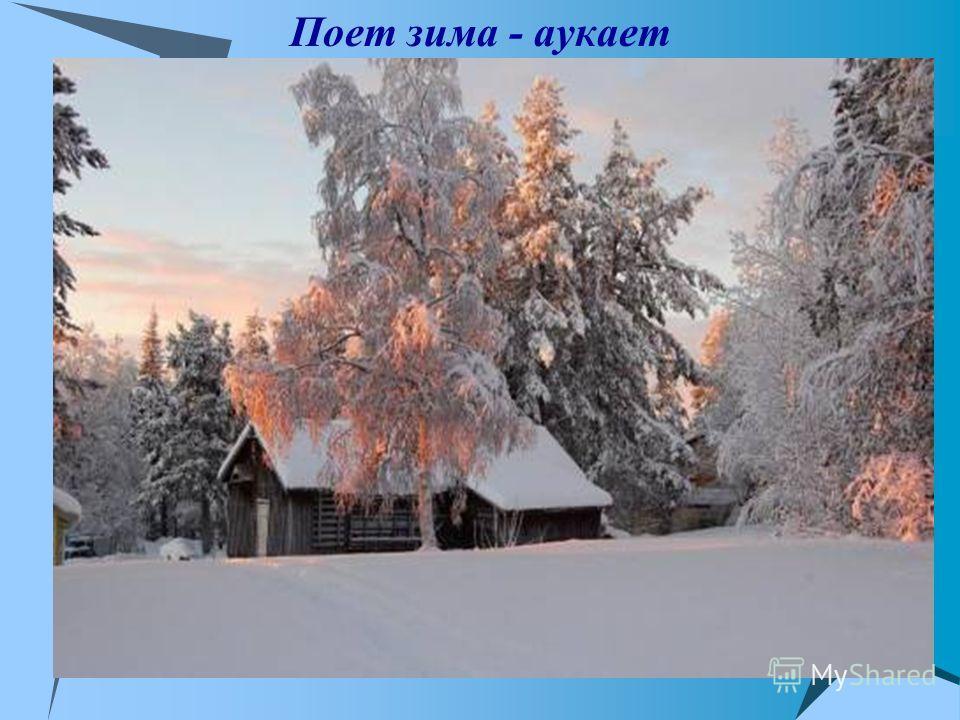 Поет зима - аукает