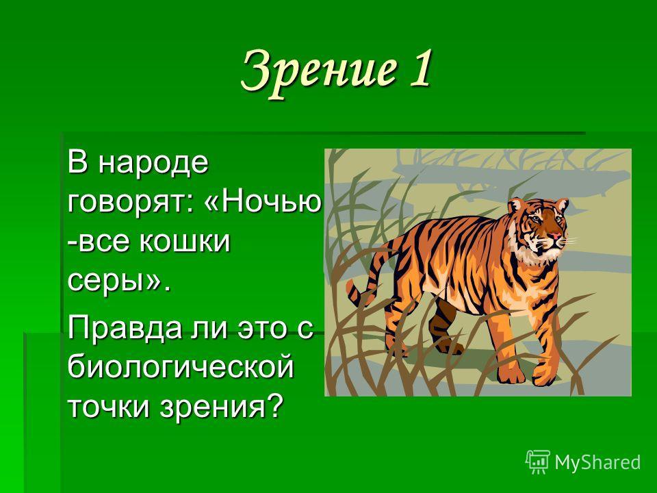 Зрение 1 В народе говорят: «Ночью -все кошки серы». Правда ли это с биологической точки зрения?