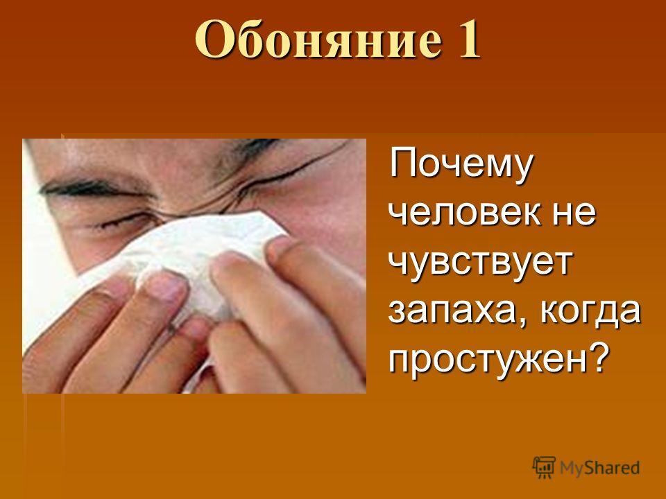 Обоняние 1 Почему человек не чувствует запаха, когда простужен?