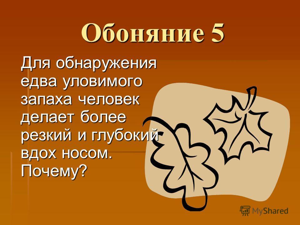 Обоняние 5 Для обнаружения едва уловимого запаха человек делает более резкий и глубокий вдох носом. Почему?