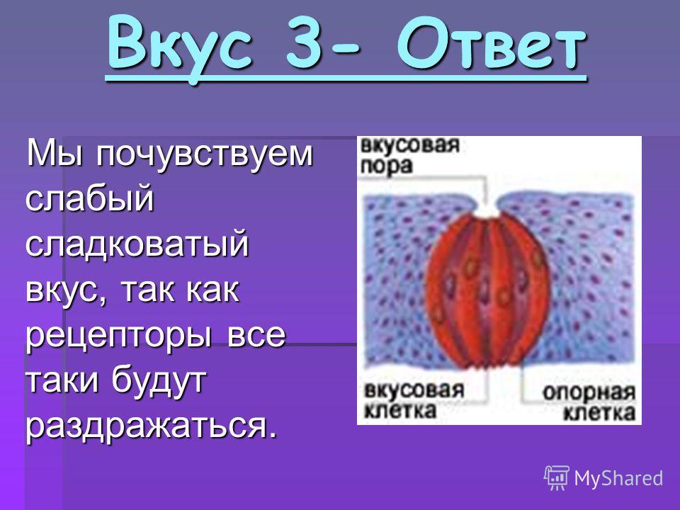 Вкус 3- Ответ Вкус 3- Ответ Мы почувствуем слабый сладковатый вкус, так как рецепторы все таки будут раздражаться.