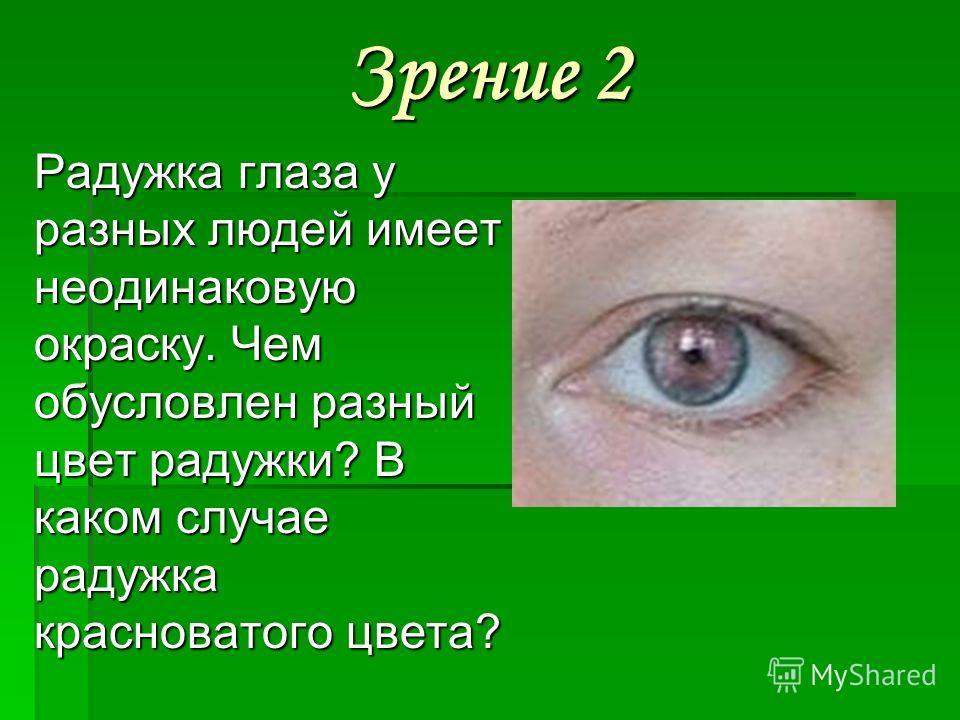 Зрение 2 Радужка глаза у разных людей имеет неодинаковую окраску. Чем обусловлен разный цвет радужки? В каком случае радужка красноватого цвета?