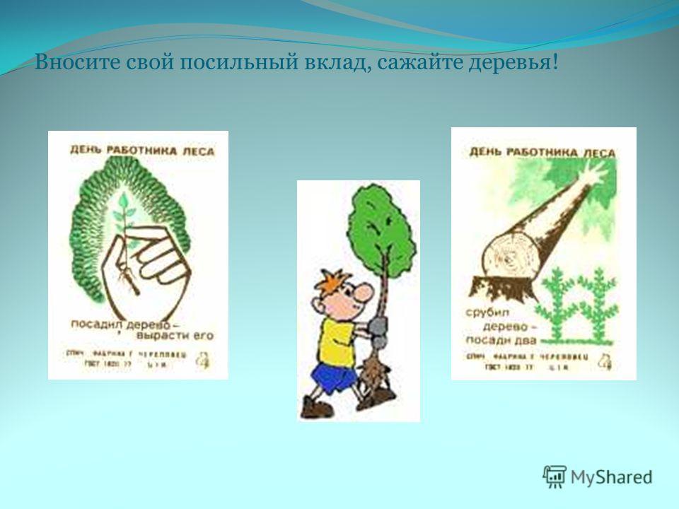 Вносите свой посильный вклад, сажайте деревья!