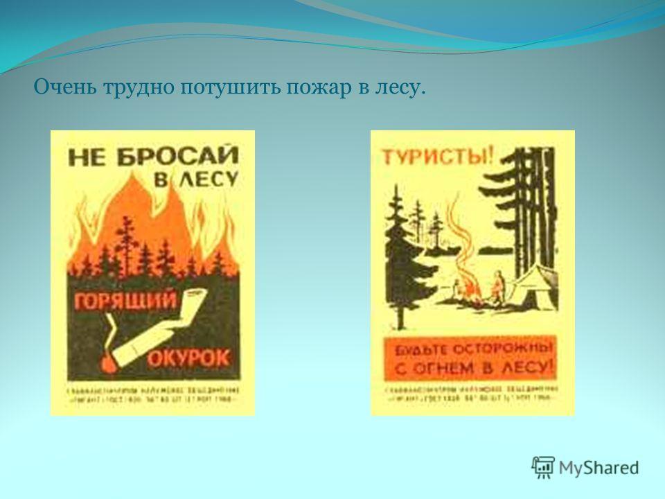 Очень трудно потушить пожар в лесу.