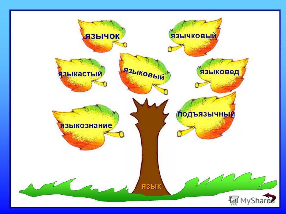 языковед язычок языкастый языковый подъязычный язычковый языкознание язык
