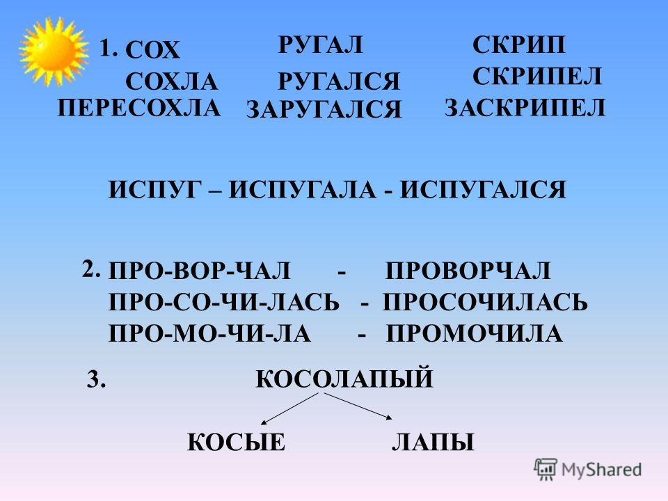 СОХ СОХЛА ПЕРЕСОХЛА РУГАЛ РУГАЛСЯ ЗАРУГАЛСЯ СКРИП СКРИПЕЛ ЗАСКРИПЕЛ 1. ПРО-ВОР-ЧАЛ - ПРОВОРЧАЛ ПРО-СО-ЧИ-ЛАСЬ - ПРОСОЧИЛАСЬ ПРО-МО-ЧИ-ЛА - ПРОМОЧИЛА 2. 3. КОСОЛАПЫЙ КОСЫЕЛАПЫ ИСПУГ – ИСПУГАЛА - ИСПУГАЛСЯ