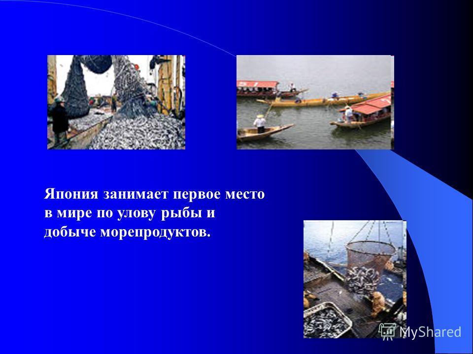 Япония занимает первое место в мире по улову рыбы и добыче морепродуктов.